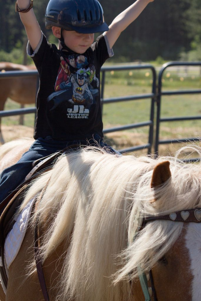 HopeWell Ranch Riding Horse